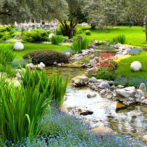 Naturnaher Feng Shui Garten