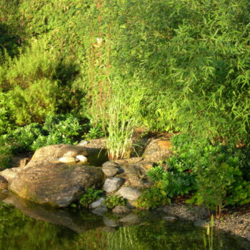 Feng Shui Teich und Brunnen